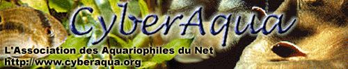La PLAU de CyberAqua : Page des Liens Aquariophiles Ultimes